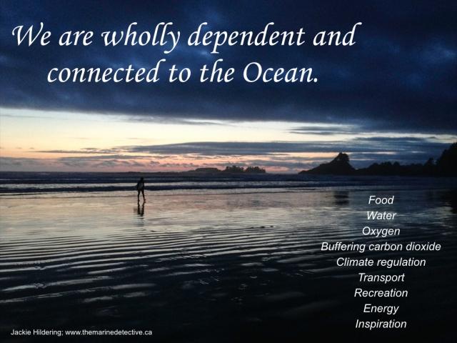 Oceans Day 2014