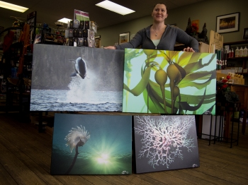 "Ready-to-hang canvases. Top two are 24 x 36"" for $349. Bottom two are 18 x 24"" for $249. Price includes shipping in the US and Canada but not taxes. Sold locally at East of Java and the West Coast Community Craft Shop."