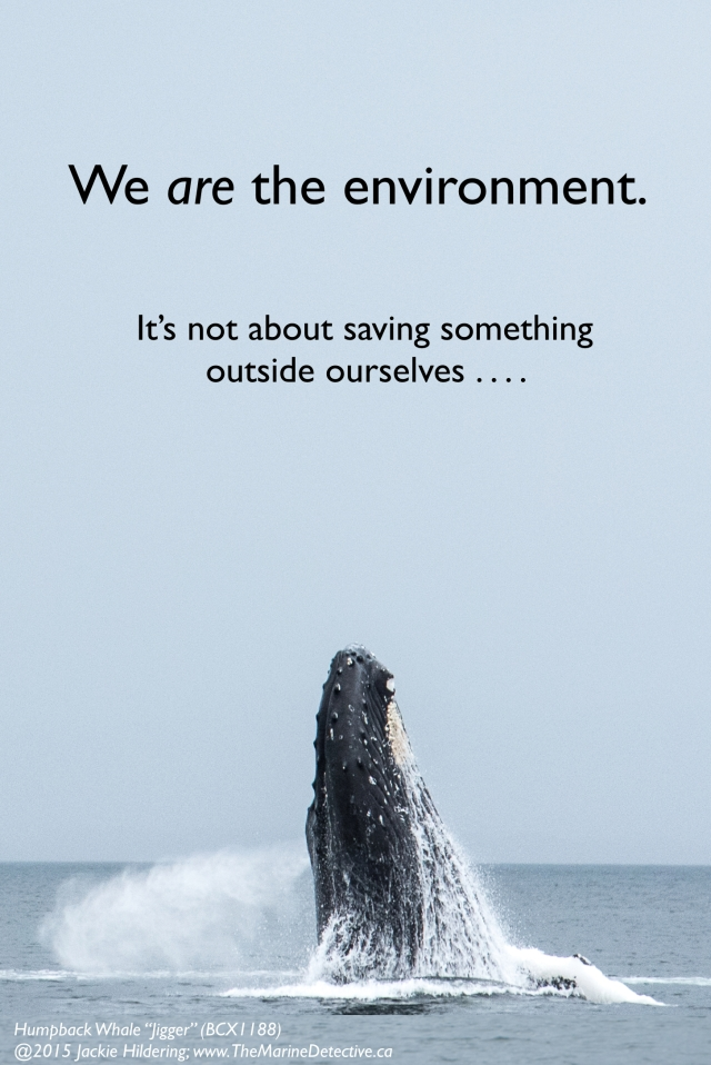 """It is such a limitation to think, and feel, and speak in a way that this is somehow about something outside ourselves . . . saving """"the environment."""" We are the environment. It's not about saving something outside ourselves . . . whales, wetlands, trees, fish. It's about choices that benefit ourselves and future generations, providing the greatest chances for health and happiness. It's about children. That's what all these photos and words are about here on """"The Marine Detective"""" folks. Inspiration. Connection. Understanding our capacity for positive change. Caring More. Consuming Less. Voting for the future. And, knowing our place IN the environment. ©2015 Jackie Hildering; #OceanVoice; www.TheMarineDetective.ca"""
