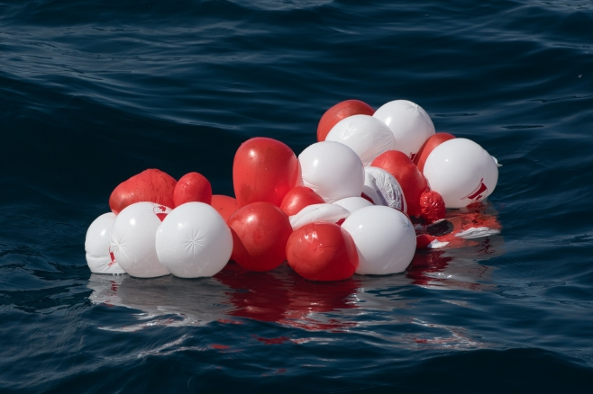 Canada Day balloons drifting in Leatherback habitat on July 21st. Photo: Hildering.