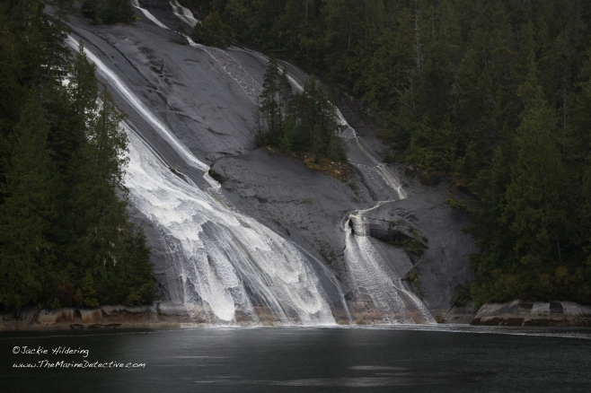 Lacey Falls, Broughton Archipelago. ©2016 Jackie Hildering.