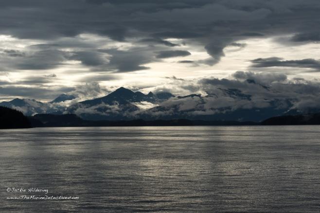 Morning light. ©2016 Jackie Hildering.